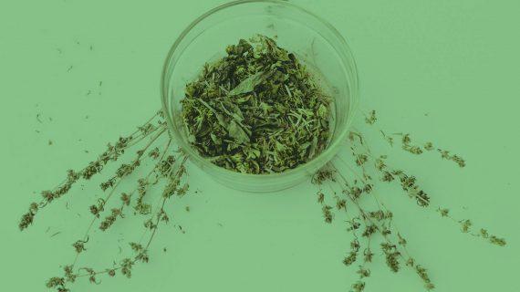 green-deco